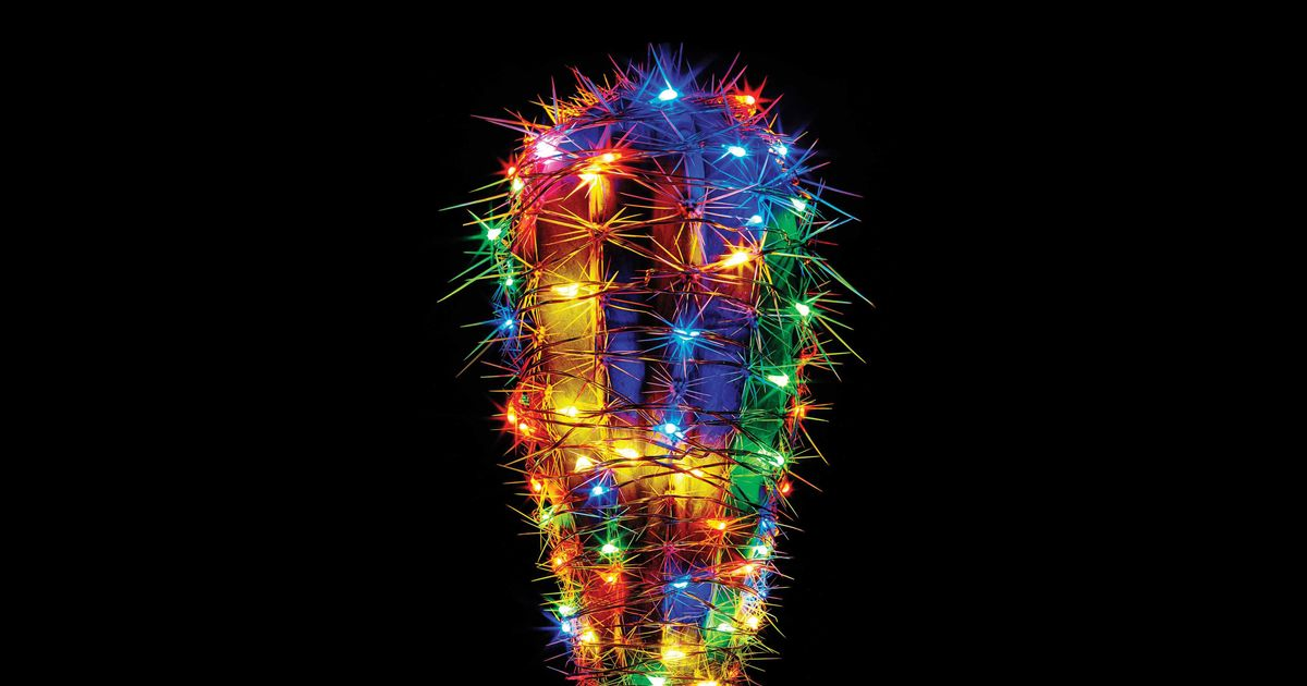 The Best Christmas Lights, According to Hyperenthusiastic Reviewers