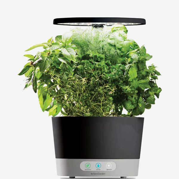 AeroGarden Harvest 360 Planter