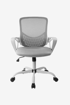 Latitude Run Alondria Mesh Task Chair