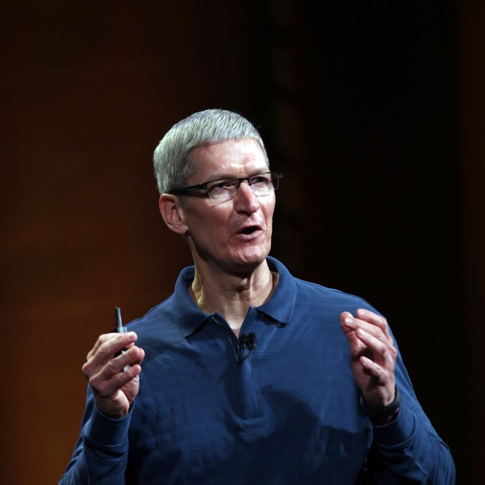 Apple CEO Tim Cook speaks during Apple's special event to introduce the iPad Mini at the California Theatre in San Jose, California on October 23, 2012. Anticipation built Tuesday as Apple prepared to unwrap its