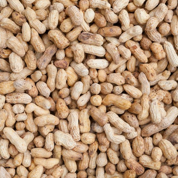 The Latest Thing That Will Supposedly Make You Live Longer: Just Eating Some Nuts