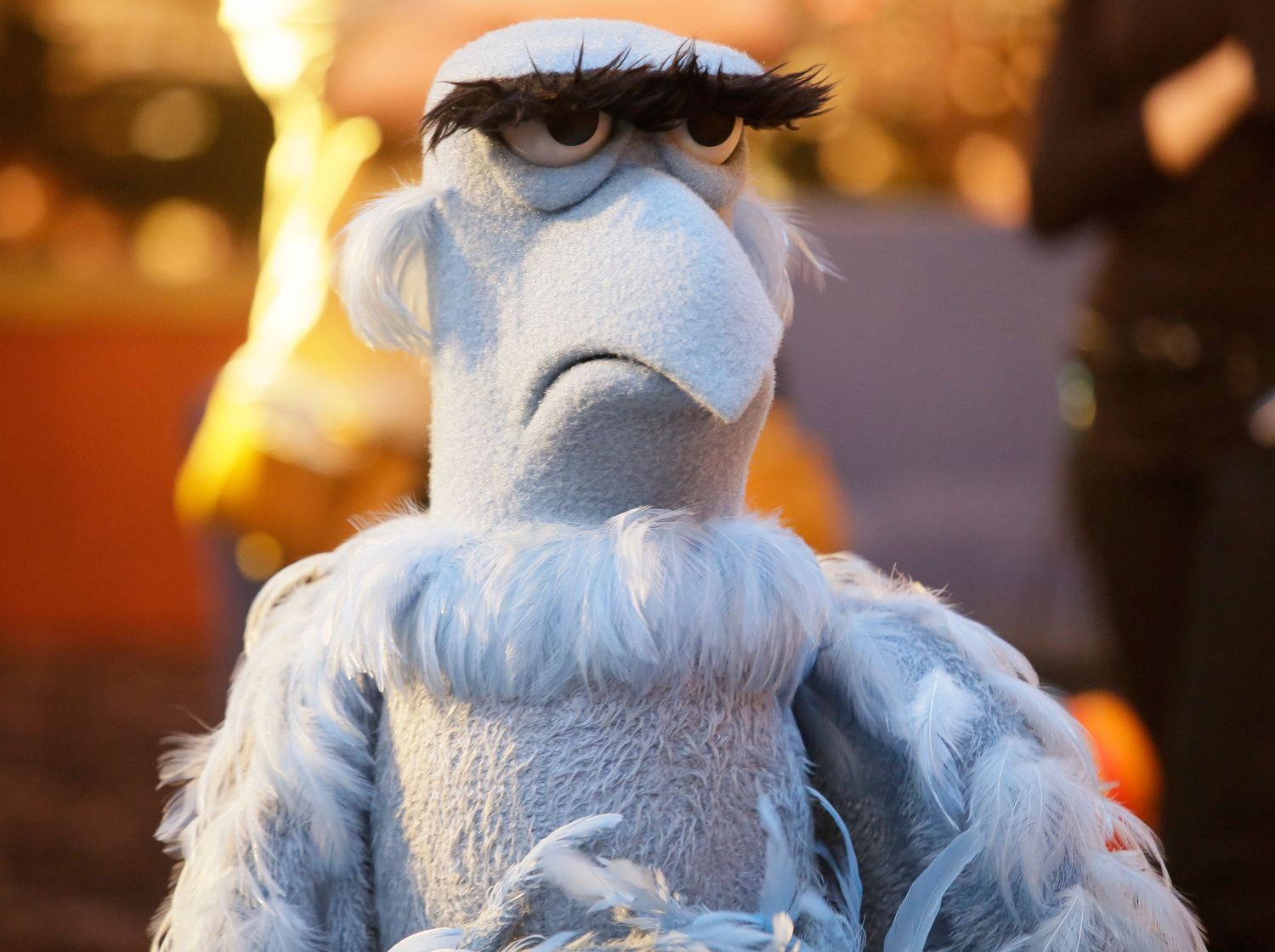 Image result for muppet vulture