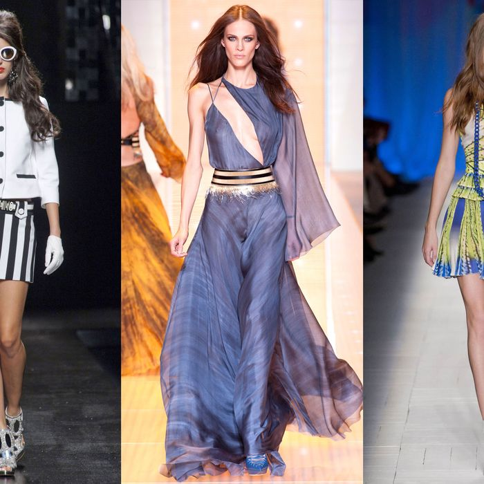 Moschina, Versace, Just Cavalli