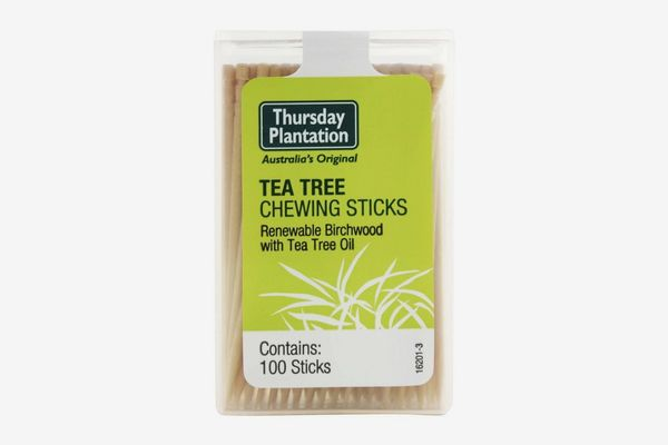 Nature's Plus Tea Tree Thursday Plantation Toothpicks, 100 Count