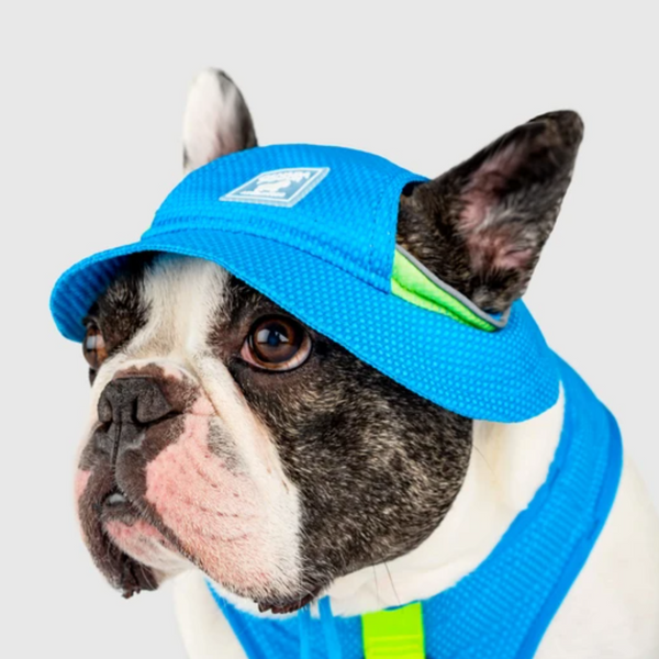 Canada Pooch Cooling Hat