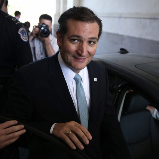 U.S Sen. Ted Cruz (R-TX) leaves the Capitol after he spoke on the Senate floor for more than 21 hours September 25, 2013 on Capitol Hill in Washington, DC. Sen. Cruz ended his marathon speech against the Obamacare at noon on Wednesday.