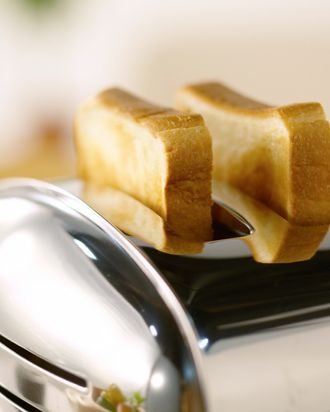Warm Toast