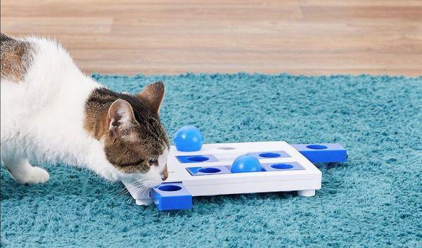 Jouet interactif pour chat Trixie Brain Mover