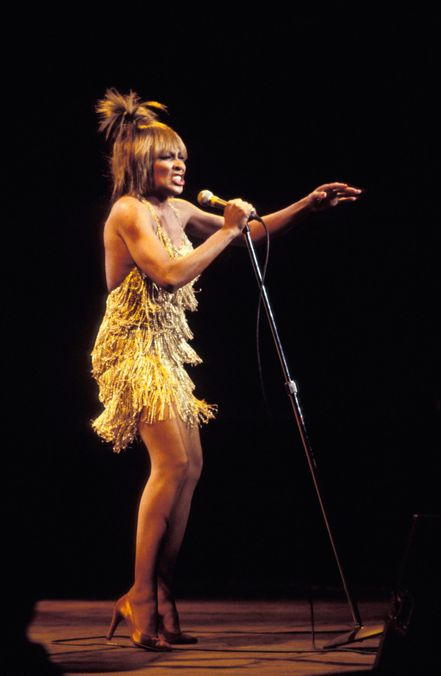 Photo 11 from Tina Turner's Gold Fringe Mini