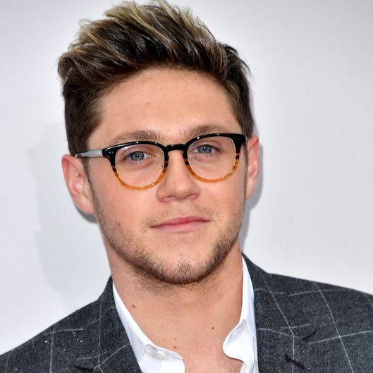 Niall Horan: Niall Still Trying To Make A 1D Reunion Happen -- Vulture
