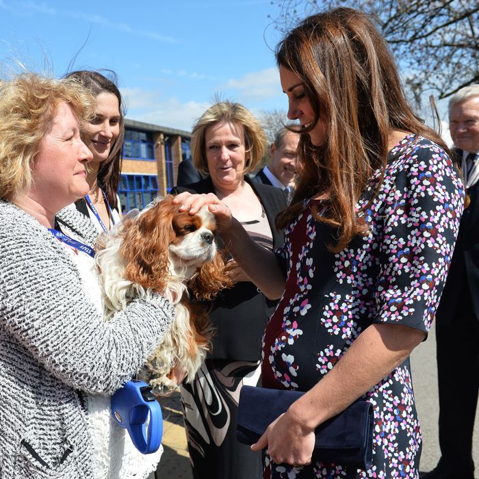 Kate and puppy.