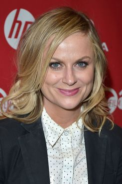 "Actress Amy Poehler attends the ""They Came Together"" premiere at Eccles Center Theatre during the 2014 Sundance Film Festival on January 24, 2014 in Park City, Utah."