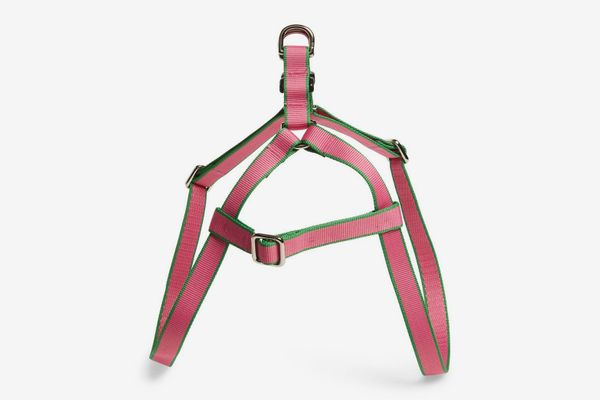 Harry Barker Chelsea Dog Harness (Pink/Green)