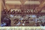 Mountain Bird Closes in Harlem, Owners Plan Relocation
