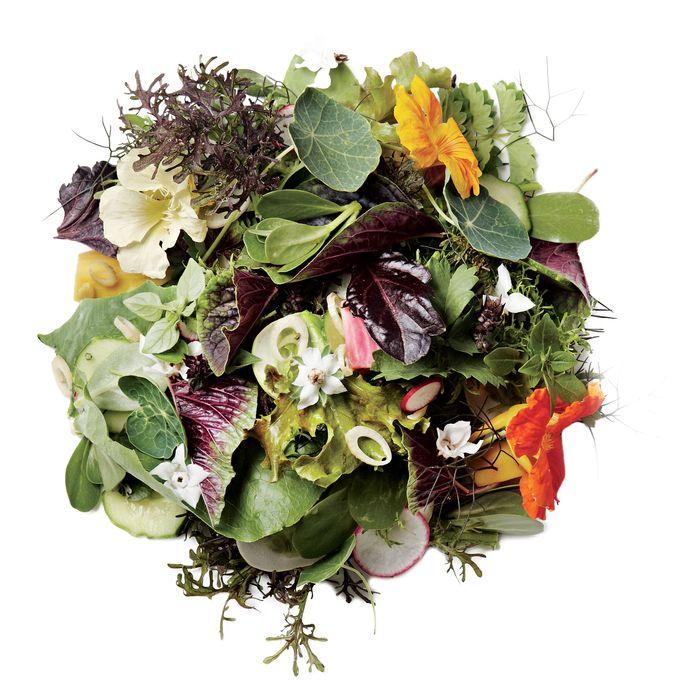 http://pixel.nymag.com/imgs/daily/grub/2012/07/20/20-salads.jpg