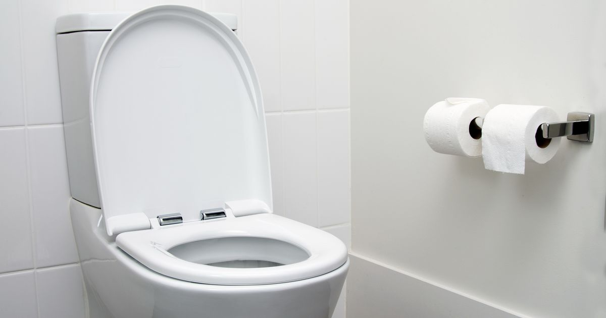 What Makes a Penis Touch the Toilet Bowl?