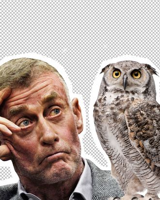 Michael Peterson, an owl.