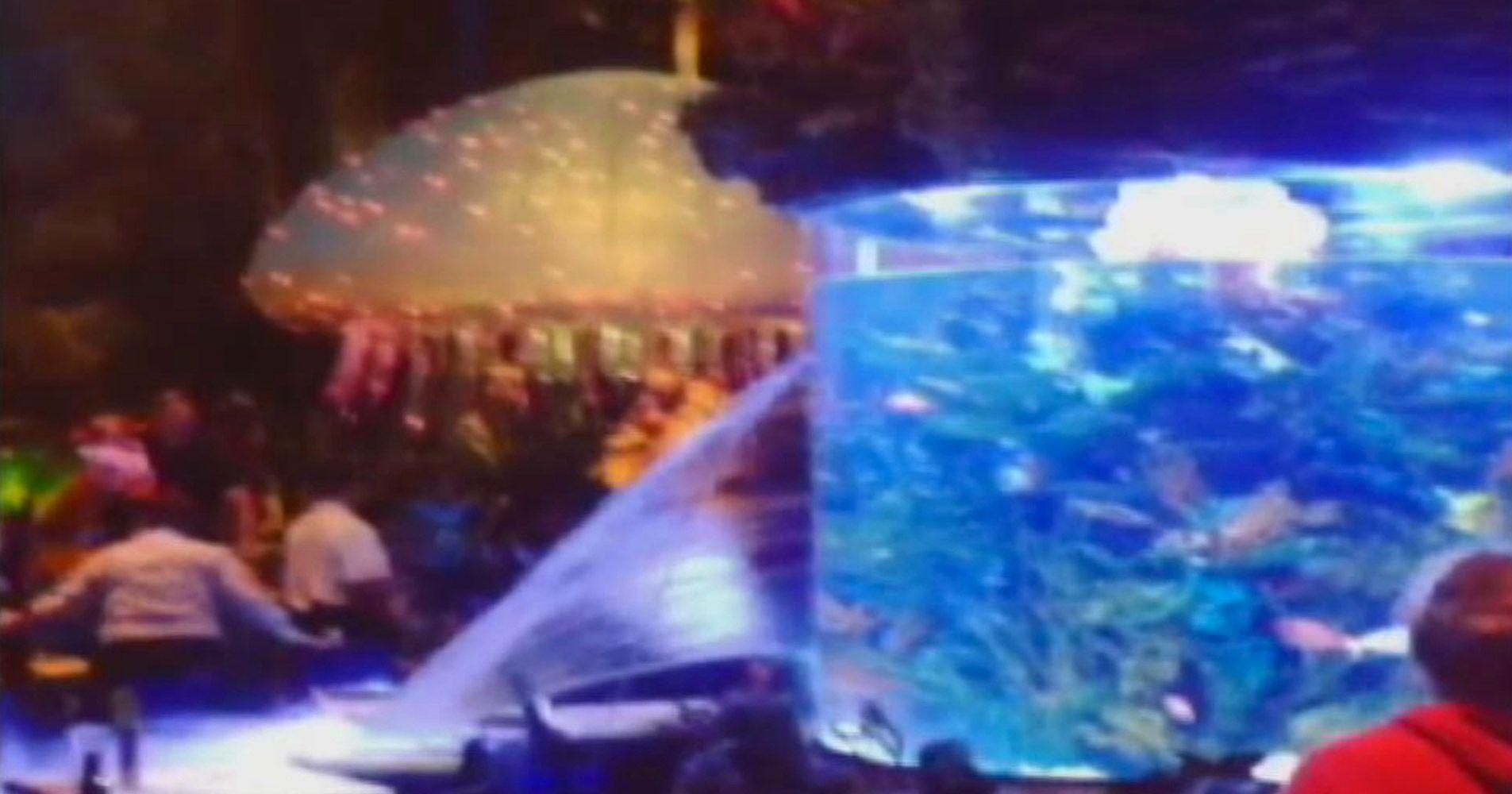 Watch a big fish tank at a disney restaurant burst at the for Disney fish tank