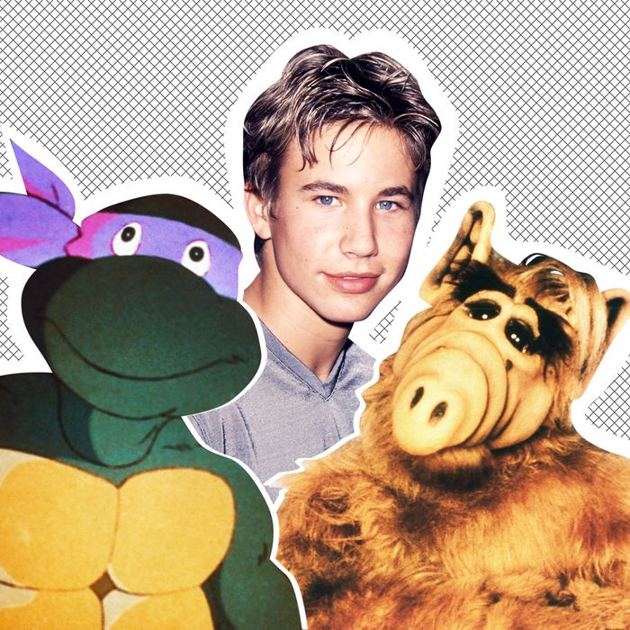 L to R: Donatello the Teenage Mutant Ninja Turtle, Johnathan Taylor Thomas, ALF.