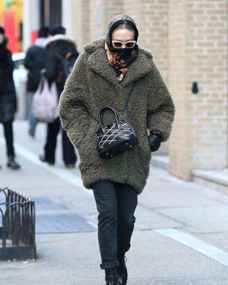 Chloë Sevigny in New York.