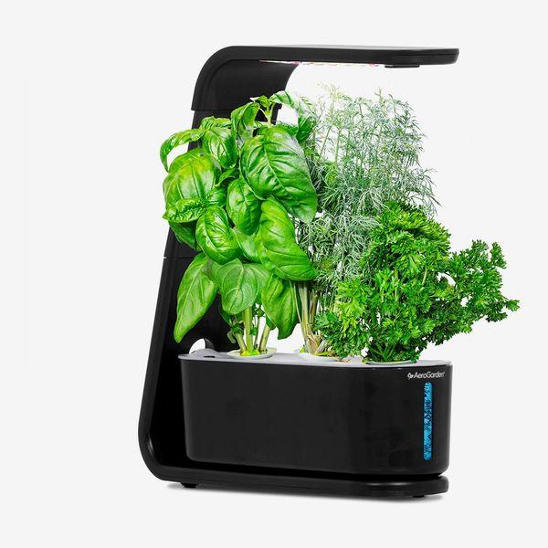 AeroGarden Sprout Indoor Garden (2020 Model)