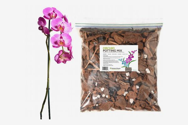 Organic Orchid Potting Mix by Perfect Plants (4qts.)