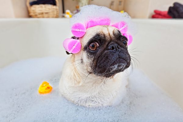 How to Forget About Valentine's Day With a Home Spa