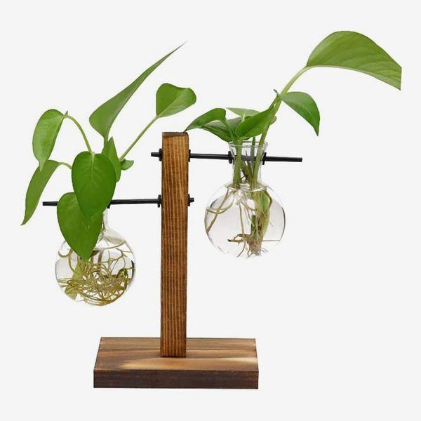 Magiin Terrarium Bulb Vase with Wooden Stand