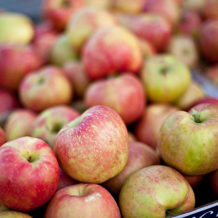 Plus: apples!