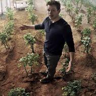 NASA Thinks Potatoes Can Legitimately Grow on Mars