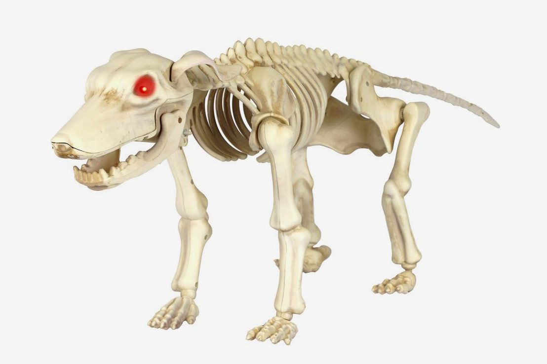 Home Accents Holiday 11 in. Animated Skeleton Dog With LED Illuminated Eyes
