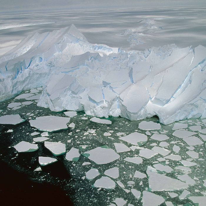 Pack ice and calving icebergs, aerial view of Mertz Glacier, Terre Adelie Land, east Antarctica