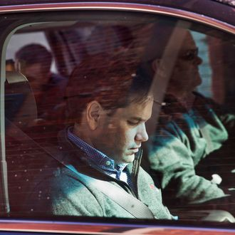 GOP Candidate For President Sen. Marco Rubio Campaigns In Iowa