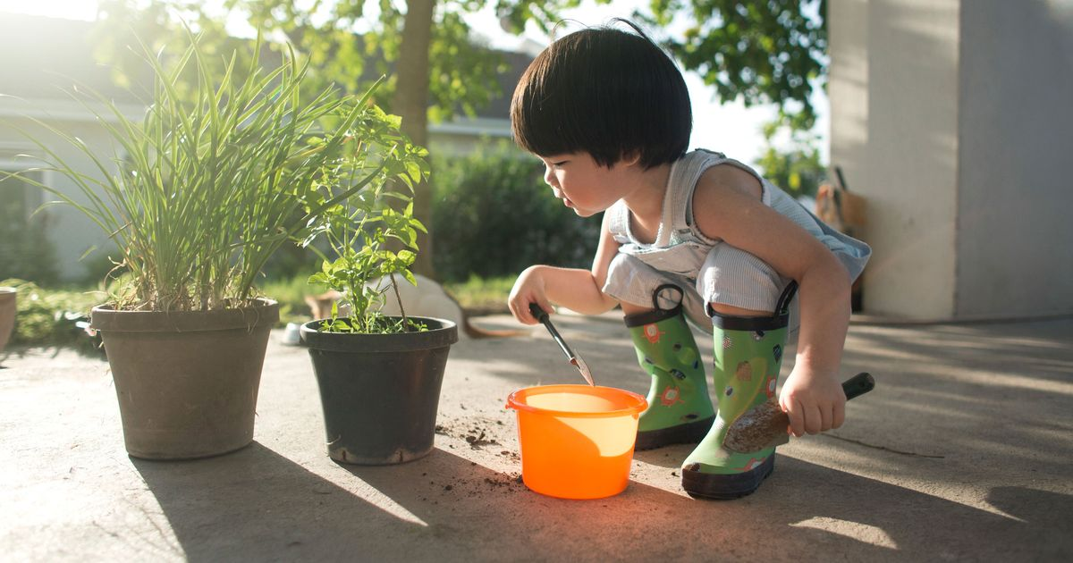 The Best Child-Safe Plants for Babies and Toddlers, According to Experts