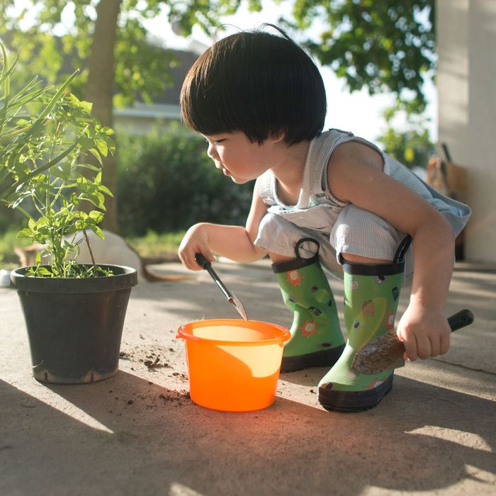 Dirt Is Good Why Kids Need Exposure To >> 9 Best Child Safe Plants 2019