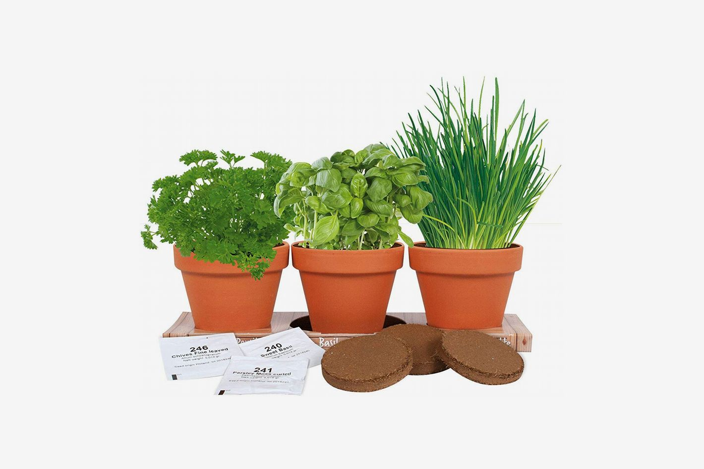 TotalGreen Holland Kitchen Herb Trio Grow Kit (Basil, Parsley and Chives)