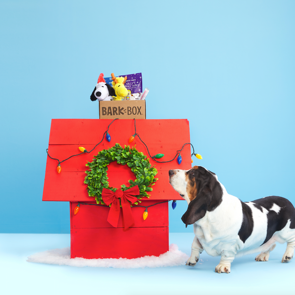 BarkBox Gift Subscription, Monthly