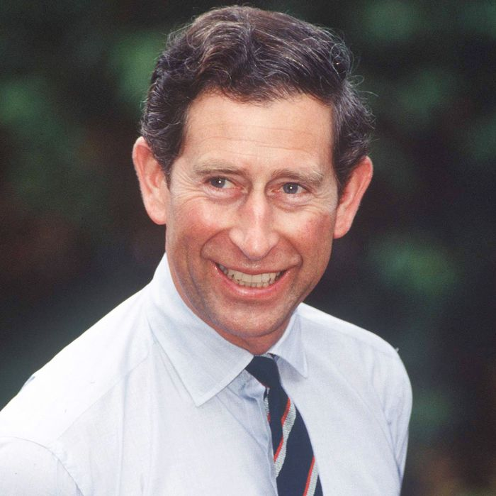 Feud Which British Actor Should Play Prince Charles