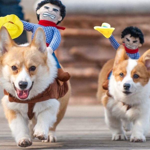 Cowboy Rider Dog Outfit