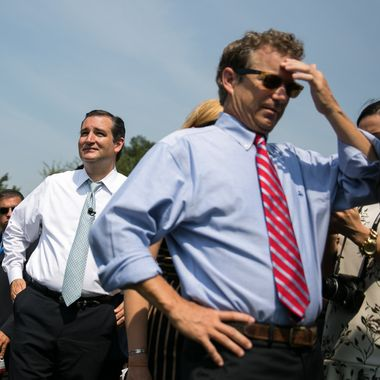 """WASHINGTON, DC - SEPTEMBER 10:  U.S. Sen. Ted Cruz (R-TX) (L) and U.S. Sen. Rand Paul (R-KY) arrive for the """"Exempt America from Obamacare"""" rally,  on Capitol Hill, September 10, 2013 in Washington, DC. Some conservative lawmakers are making a push to try to defund the health care law as part of the debates over the budget and funding the federal government. (Photo by Drew Angerer/Getty Images)"""