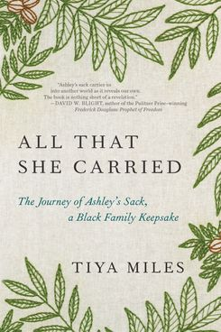 All That She Carried: The Journey of Ashley's Sack, a Black Family Keepsake, by Tiya Miles