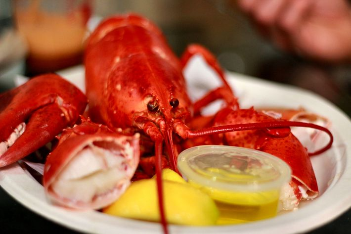 http://pixel.nymag.com/imgs/daily/grub/2012/06/18/18-beach-eats-lobster.jpg
