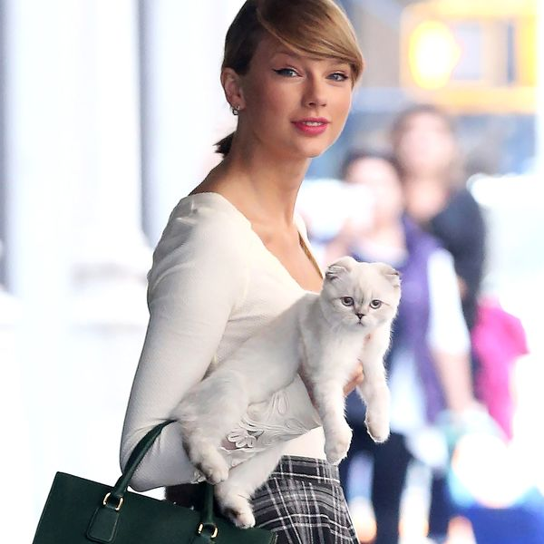 Method Actor Taylor Swift Went to 'Cat School' on the Set of the Movie Cats