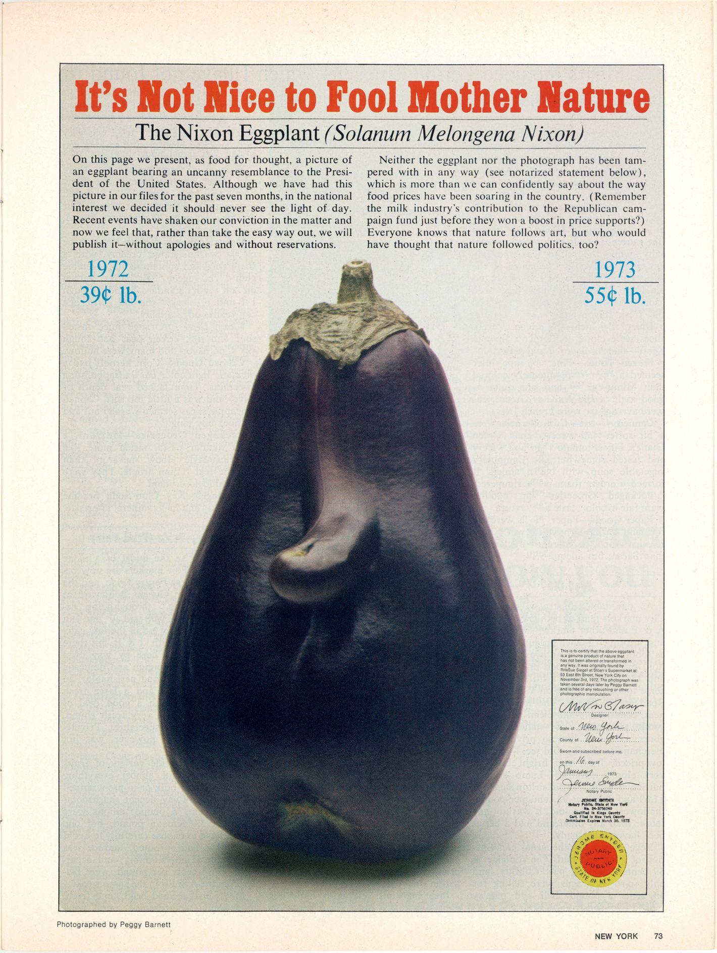The Richard Nixon Eggplant by Peggy Barnett