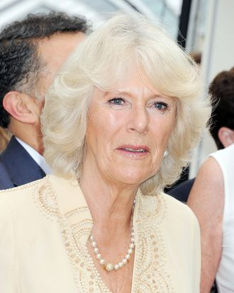 Camilla Duchess of Cornwall.