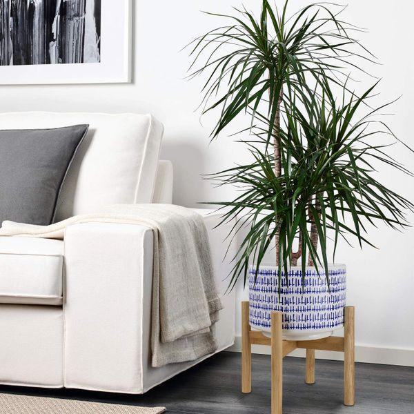 La Jolíe Muse Plant Pots With Stand — H24-cm. Large Ceramic Flower Pot With Wood Holder