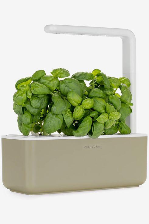 35 Best Gifts For Gardeners 2020 The Strategist New York Magazine