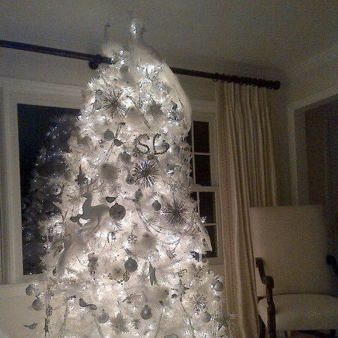 The instant online reaction to Sandra Lee's tweeted photo of her and Gov.  Andrew Cuomo's Christmas tree has been fun to read, if pretty mean. - Gov. Cuomo's Christmas Tree Is A 'Hot Mess' With A Hot Tiger