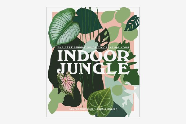 'The Leaf Supply Guide to Creating Your Indoor Jungle'