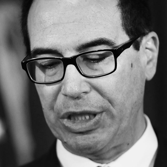 Treasury secretary Steve Mnuchin.